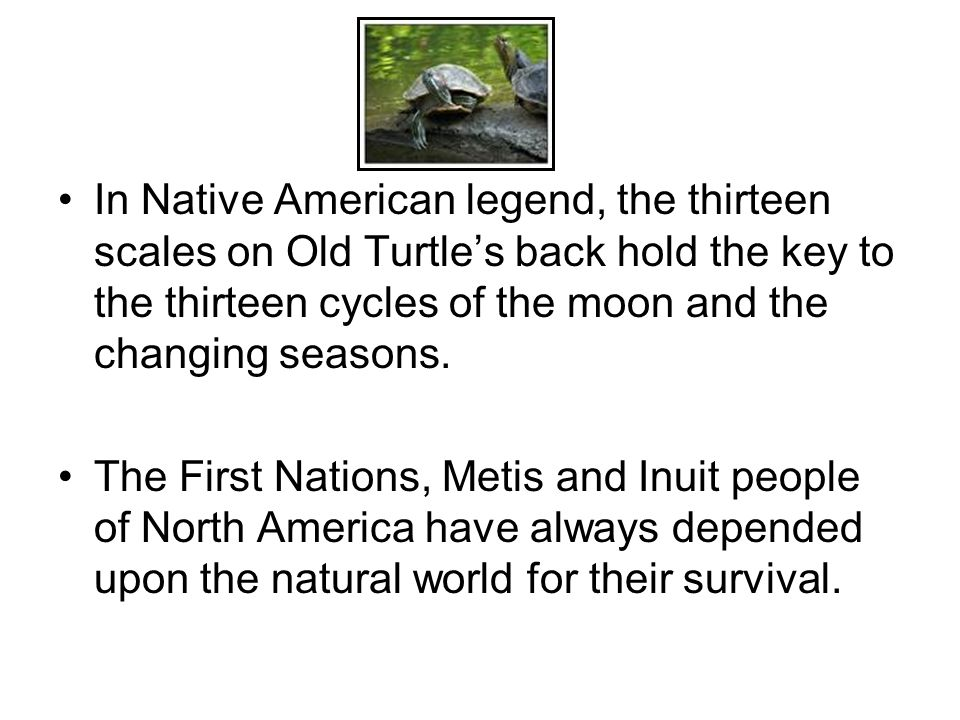 In Native American legend, the thirteen scales on Old Turtle's back hold the key to the thirteen cycles of the moon and the changing seasons.