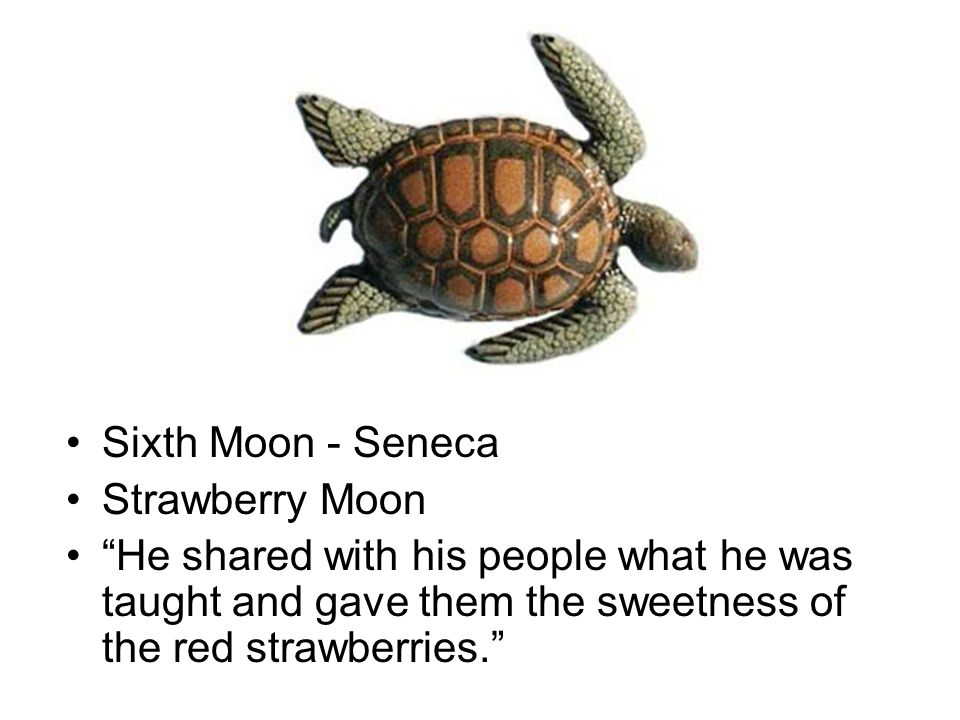 Sixth Moon - Seneca Strawberry Moon He shared with his people what he was taught and gave them the sweetness of the red strawberries.
