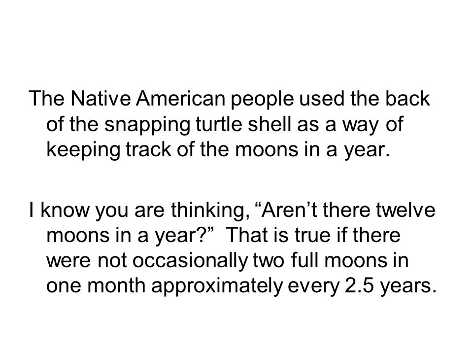 The Native American people used the back of the snapping turtle shell as a way of keeping track of the moons in a year.