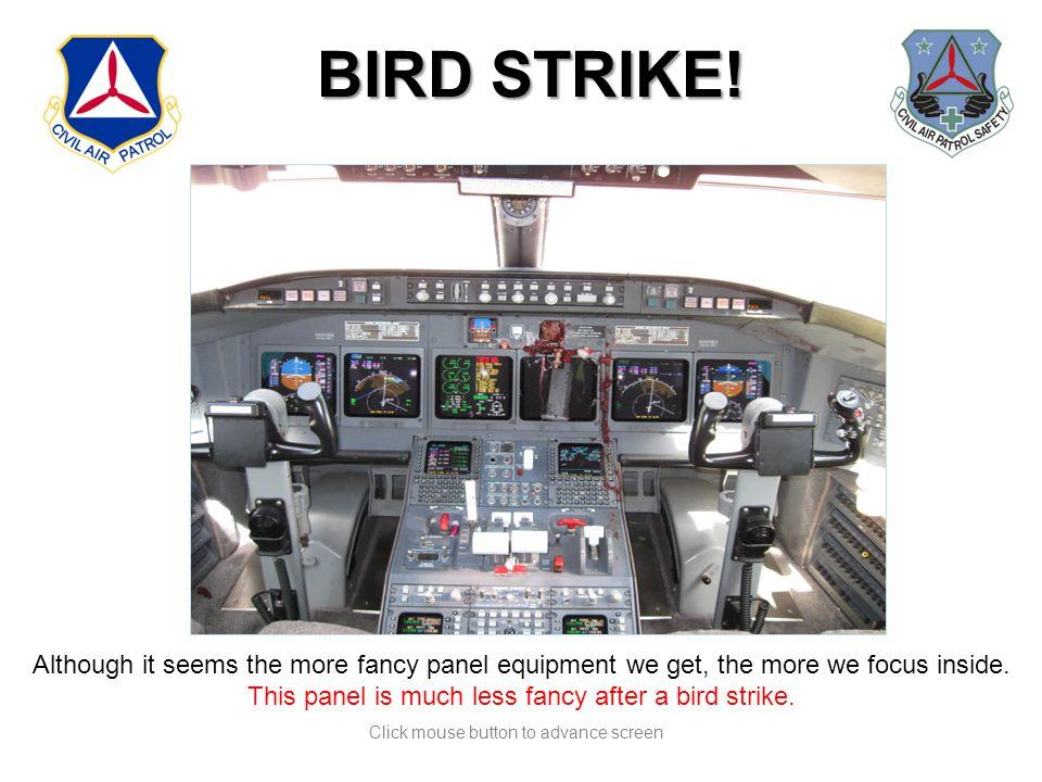 Click mouse button to advance screen BIRD STRIKE.