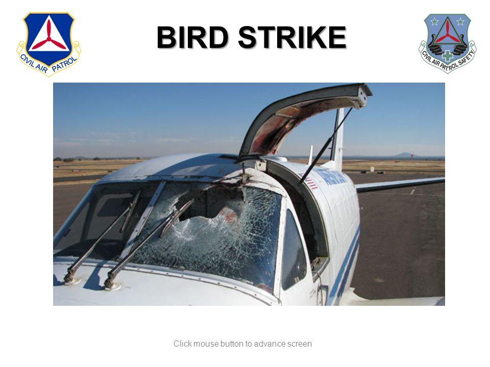 Click mouse button to advance screen BIRD STRIKE BIRD STRIKE
