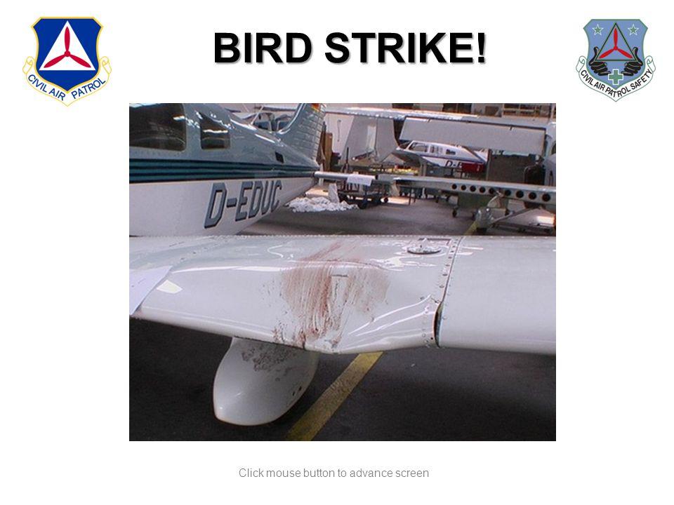 Click mouse button to advance screen BIRD STRIKE! l BIRD STRIKE!