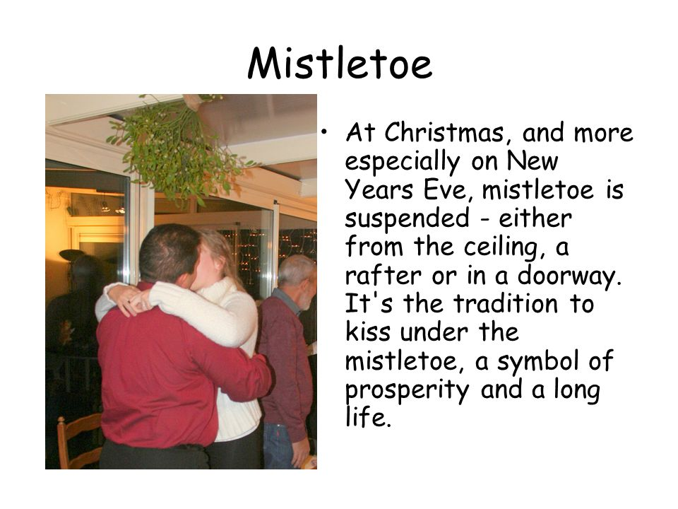 Mistletoe At Christmas, and more especially on New Years Eve, mistletoe is suspended - either from the ceiling, a rafter or in a doorway.