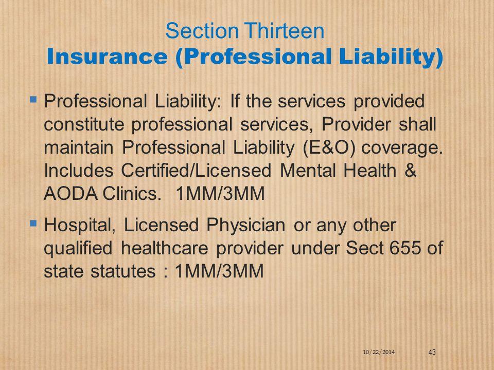 Section Thirteen Insurance (Professional Liability)  Professional Liability: If the services provided constitute professional services, Provider shal