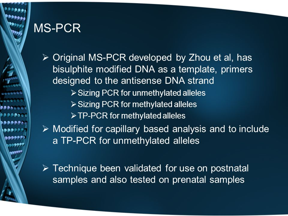 MS-PCR  Original MS-PCR developed by Zhou et al, has bisulphite modified DNA as a template, primers designed to the antisense DNA strand  Sizing PCR