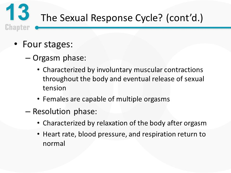 The Sexual Response Cycle.