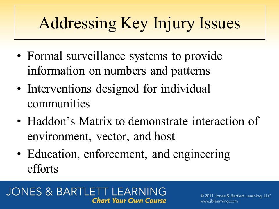 Addressing Key Injury Issues Formal surveillance systems to provide information on numbers and patterns Interventions designed for individual communities Haddon's Matrix to demonstrate interaction of environment, vector, and host Education, enforcement, and engineering efforts