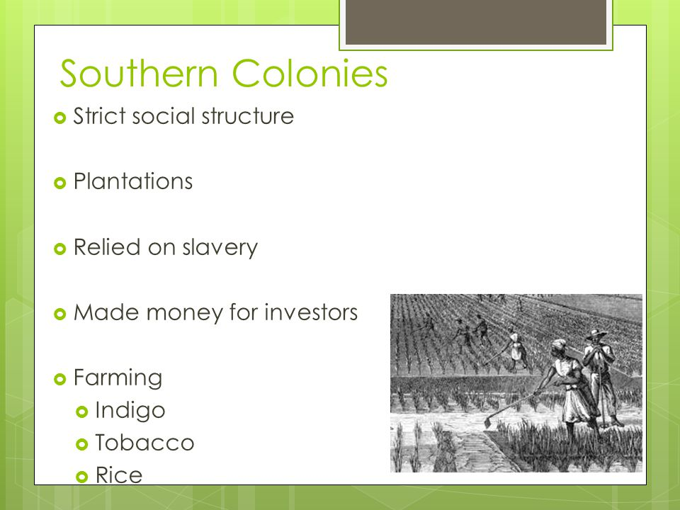 Southern Colonies  Strict social structure  Plantations  Relied on slavery  Made money for investors  Farming  Indigo  Tobacco  Rice