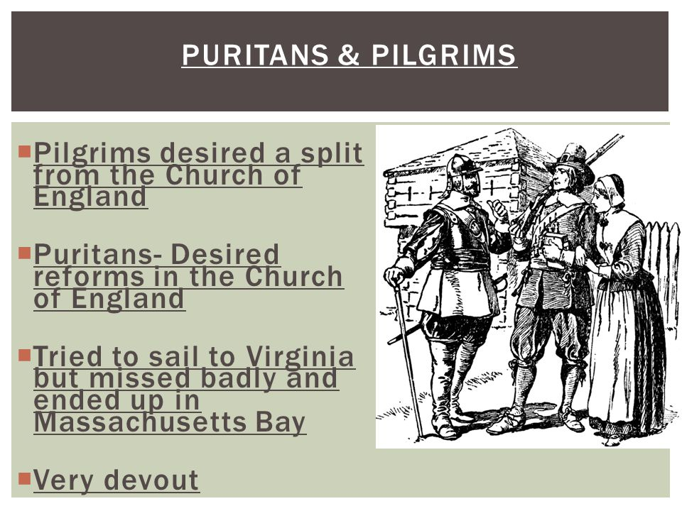 PURITANS & PILGRIMS  Pilgrims desired a split from the Church of England  Puritans- Desired reforms in the Church of England  Tried to sail to Virg