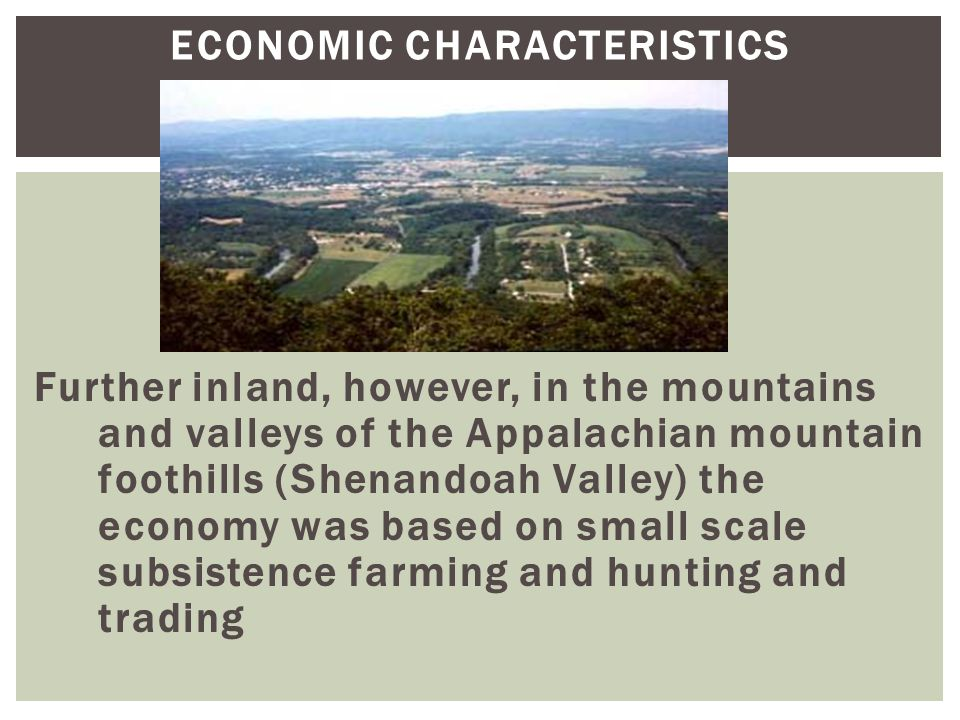 ECONOMIC CHARACTERISTICS Further inland, however, in the mountains and valleys of the Appalachian mountain foothills (Shenandoah Valley) the economy w
