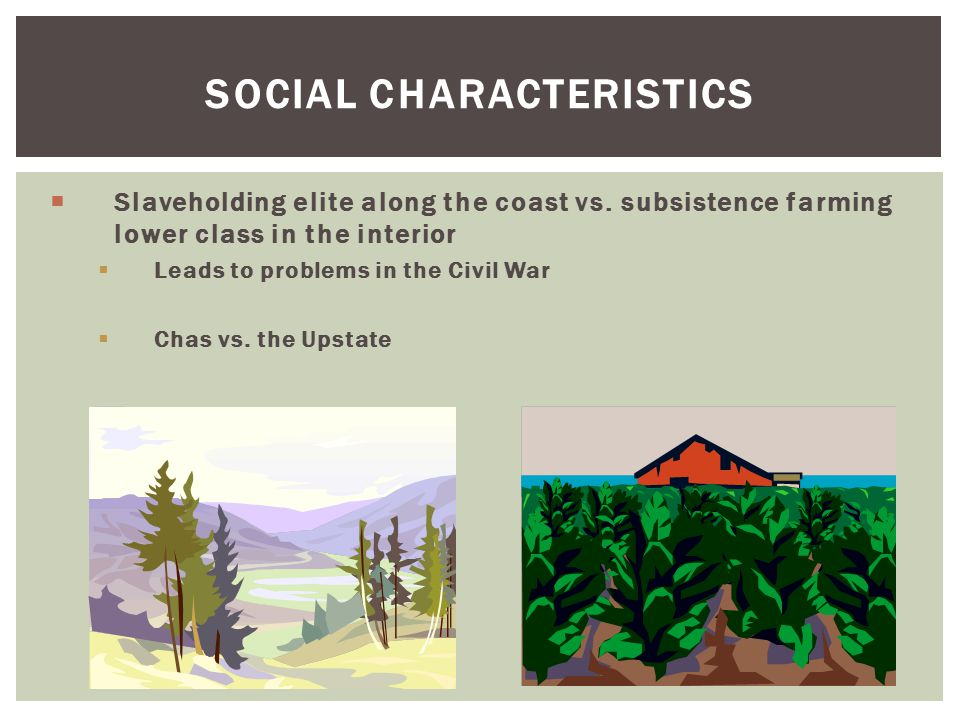 SOCIAL CHARACTERISTICS  Slaveholding elite along the coast vs. subsistence farming lower class in the interior  Leads to problems in the Civil War 