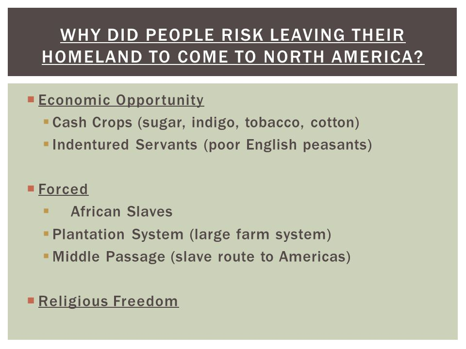 WHY DID PEOPLE RISK LEAVING THEIR HOMELAND TO COME TO NORTH AMERICA?  Economic Opportunity  Cash Crops (sugar, indigo, tobacco, cotton)  Indentured