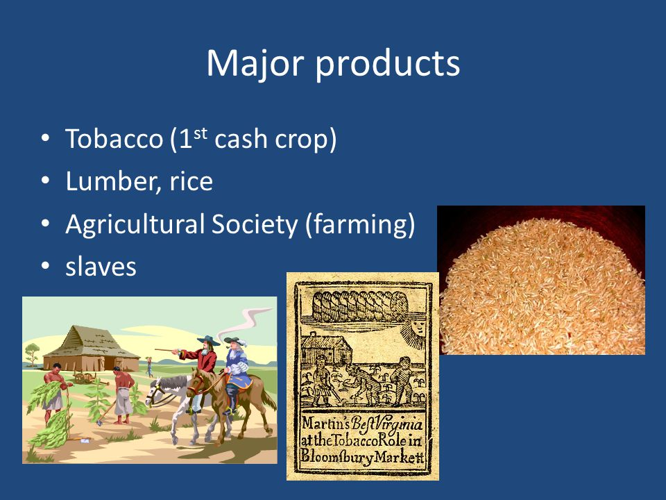 Major products Tobacco (1 st cash crop) Lumber, rice Agricultural Society (farming) slaves