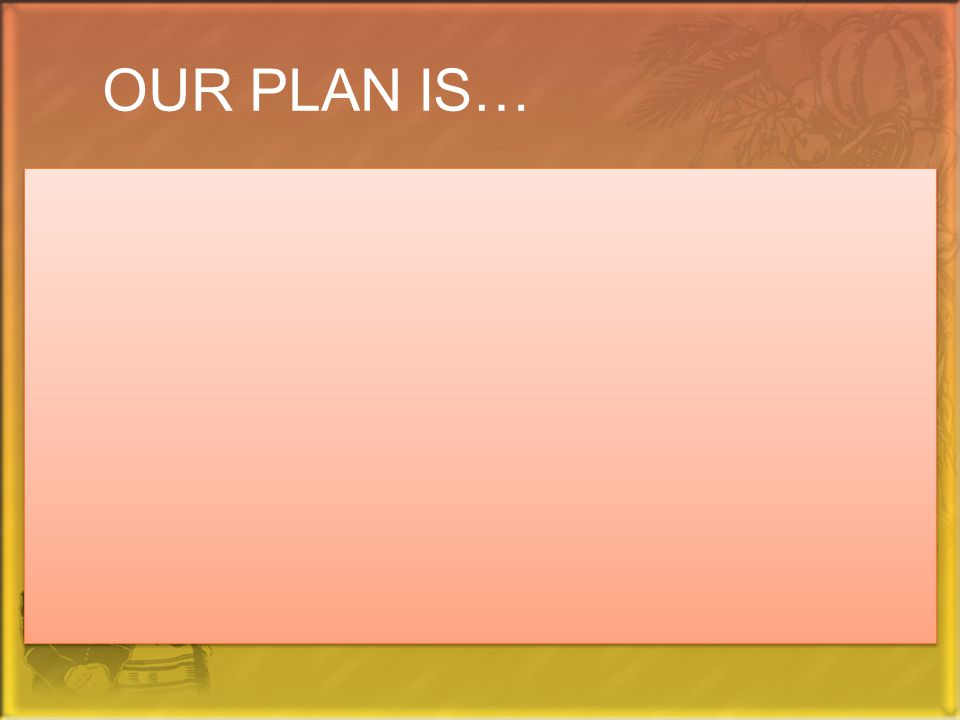 OUR PLAN IS…