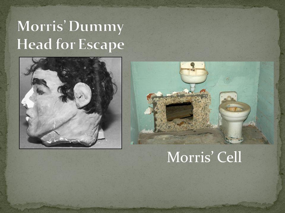 Morris' Cell
