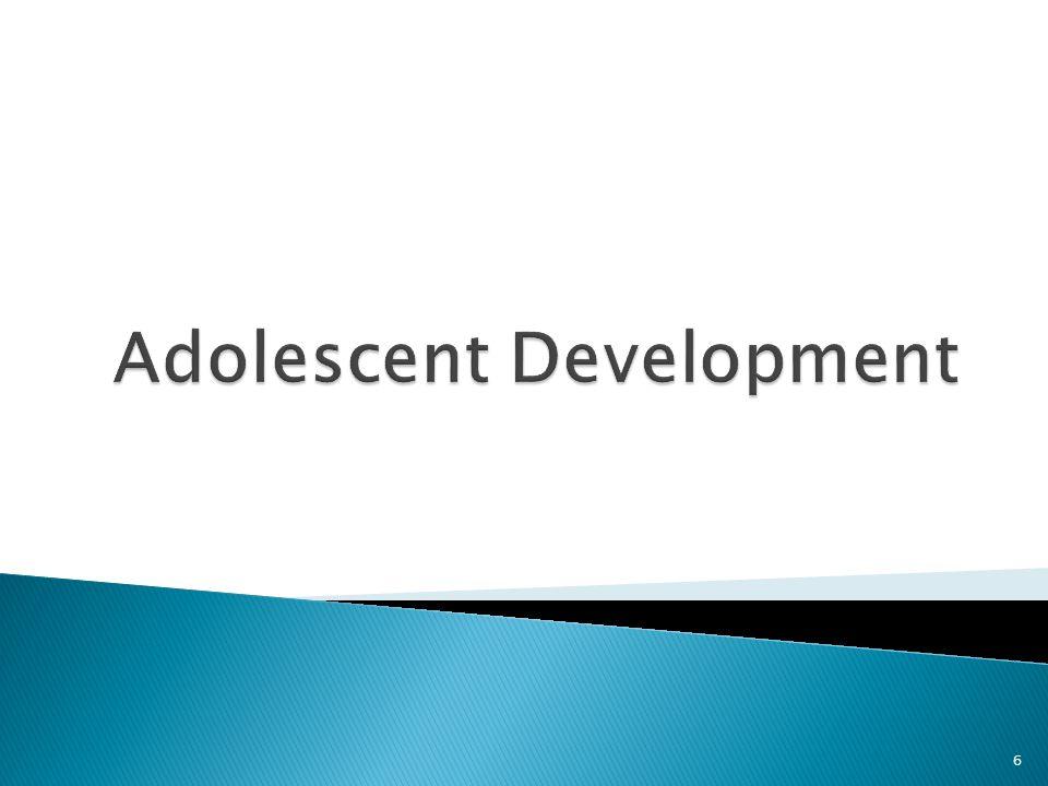 Four Identity Statuses to describe the process of identity development  Foreclosure  Moratorium  Identity Achievement  Diffusion 27