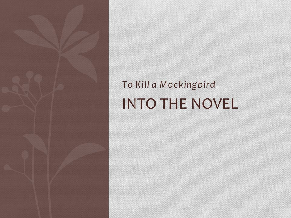 To Kill a Mockingbird INTO THE NOVEL