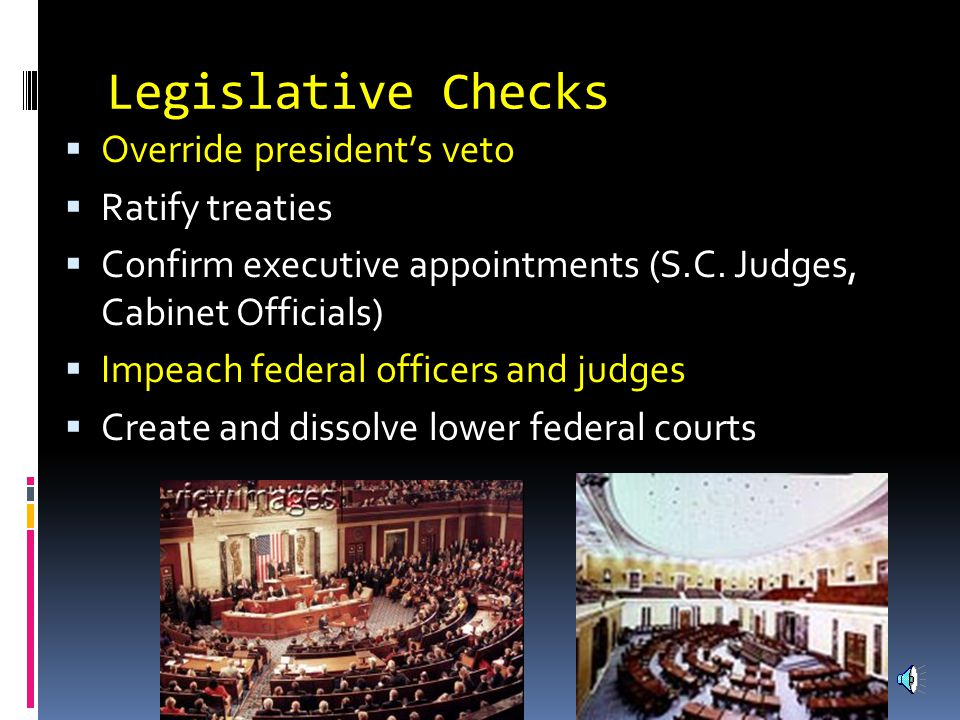 Executive Checks  Propose laws to Congress  Veto laws made by Congress  Negotiate foreign treaties  Appoint federal judges  Grant pardons to federal offenders