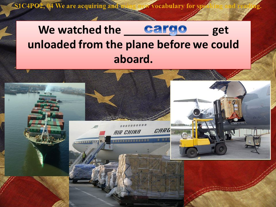 We watched the ______________ get unloaded from the plane before we could aboard.