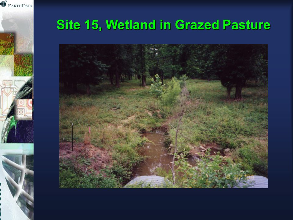 Site 15, Wetland in Grazed Pasture