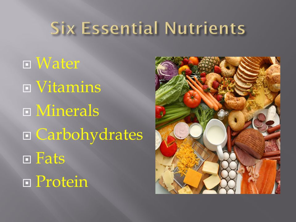  Water  Vitamins  Minerals  Carbohydrates  Fats  Protein