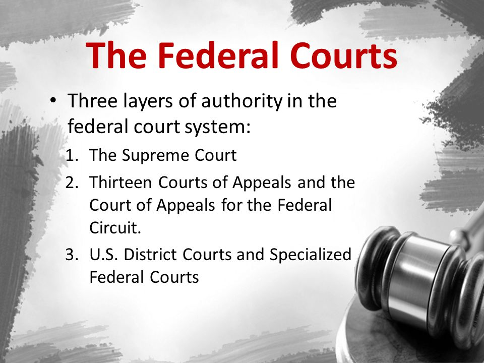 District Courts 94 courts Lowest level of the federal judicial system Trial courts for both criminal/civil federal cases District Courts has original jurisdiction to hear cases involving – Constitutional law – Cases Involving citizens of different states Federal Court System