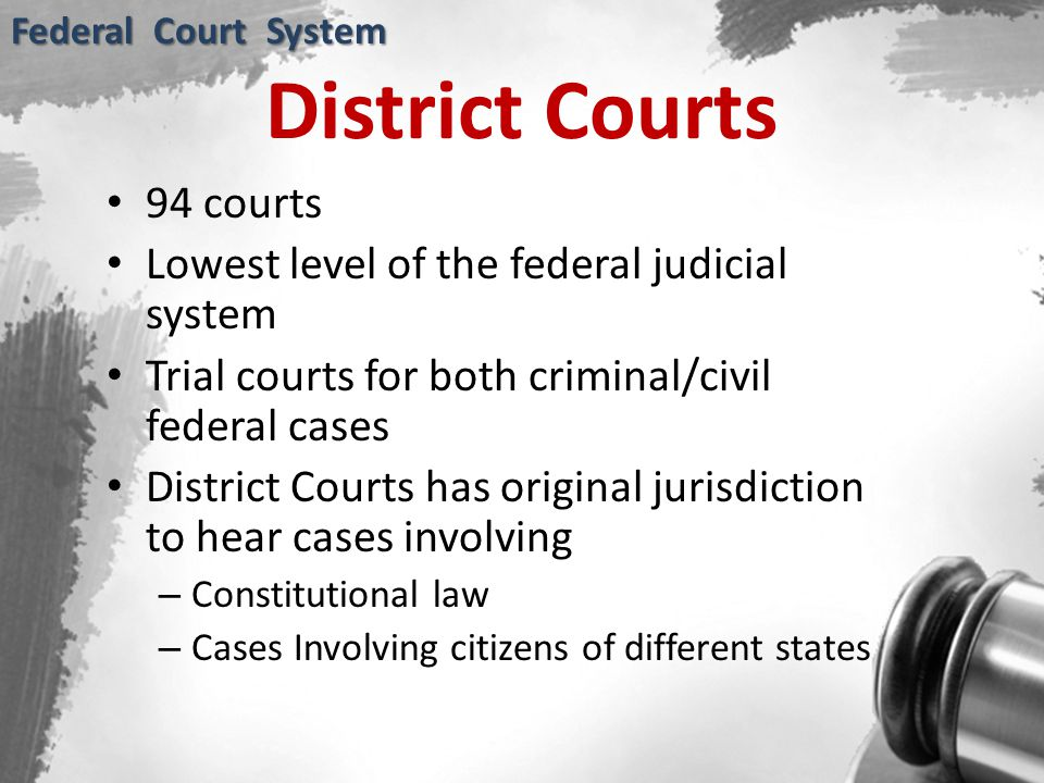 District Courts 94 courts Lowest level of the federal judicial system Trial courts for both criminal/civil federal cases District Courts has original