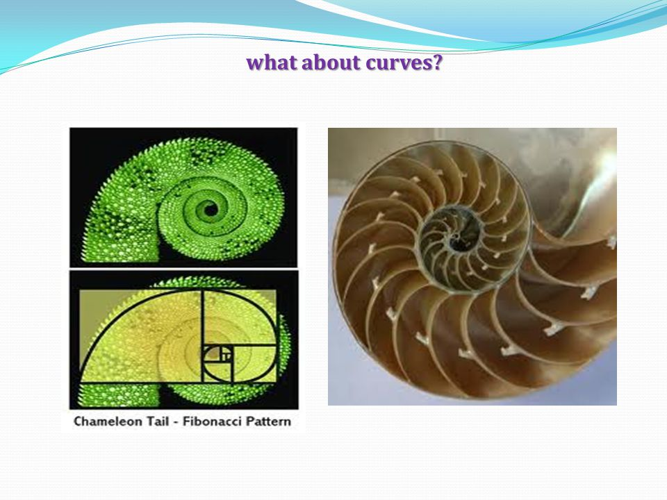 what about curves?