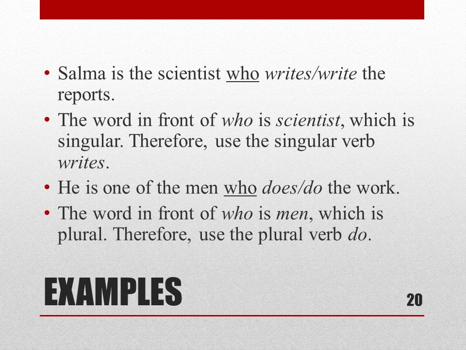 EXAMPLES Salma is the scientist who writes/write the reports.