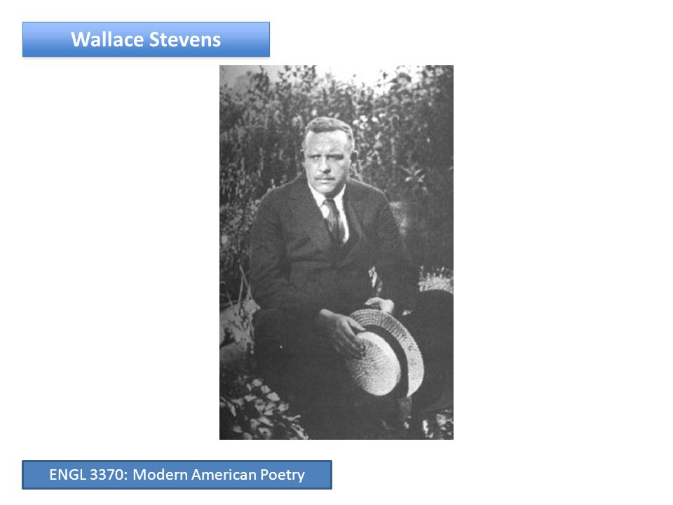 Major American Writers: Wallace Stevens Images from Stevens' World: People David Levine's Stevens