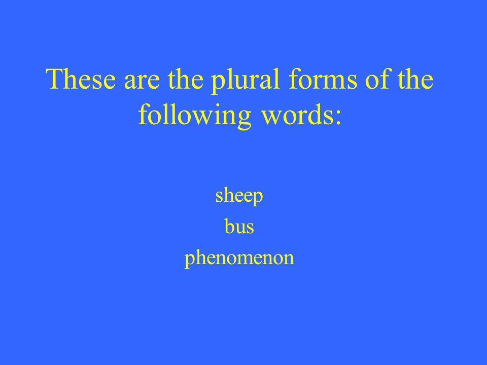 These are the plural forms of the following words: sheep bus phenomenon