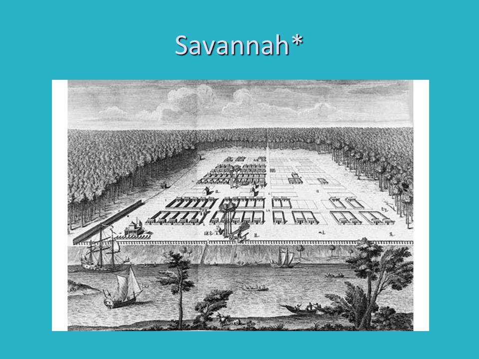 Savannah*