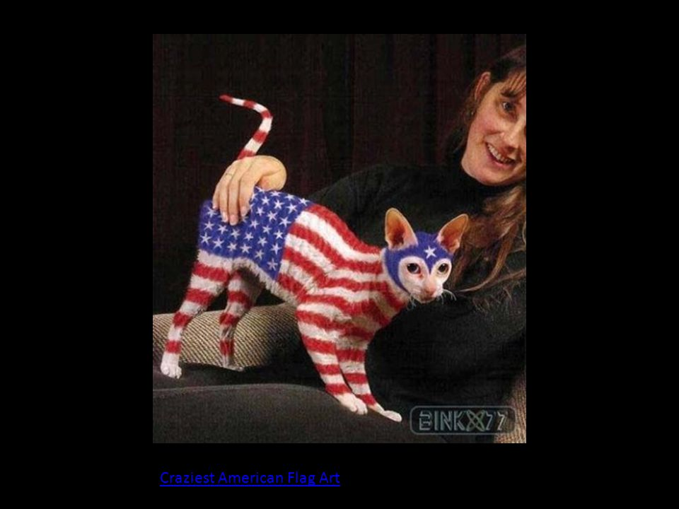 Craziest American Flag Art