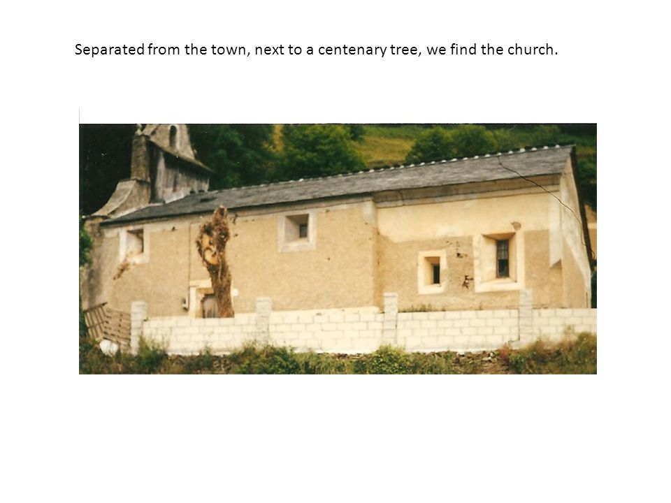 Separated from the town, next to a centenary tree, we find the church.