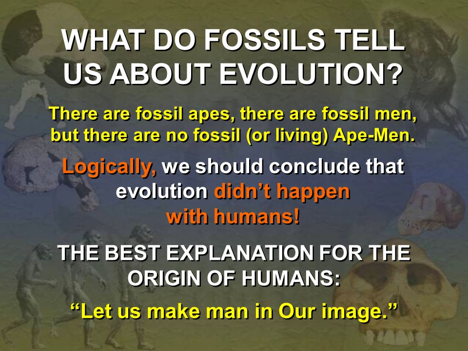 WHAT DO FOSSILS TELL US ABOUT EVOLUTION? There are fossil apes, there are fossil men, but there are no fossil (or living) Ape-Men. Logically, we shoul