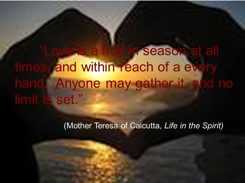 """""""Love is a fruit in season at all times, and within reach of a every hand. Anyone may gather it, and no limit is set."""" (Mother Teresa of Calcutta, Lif"""