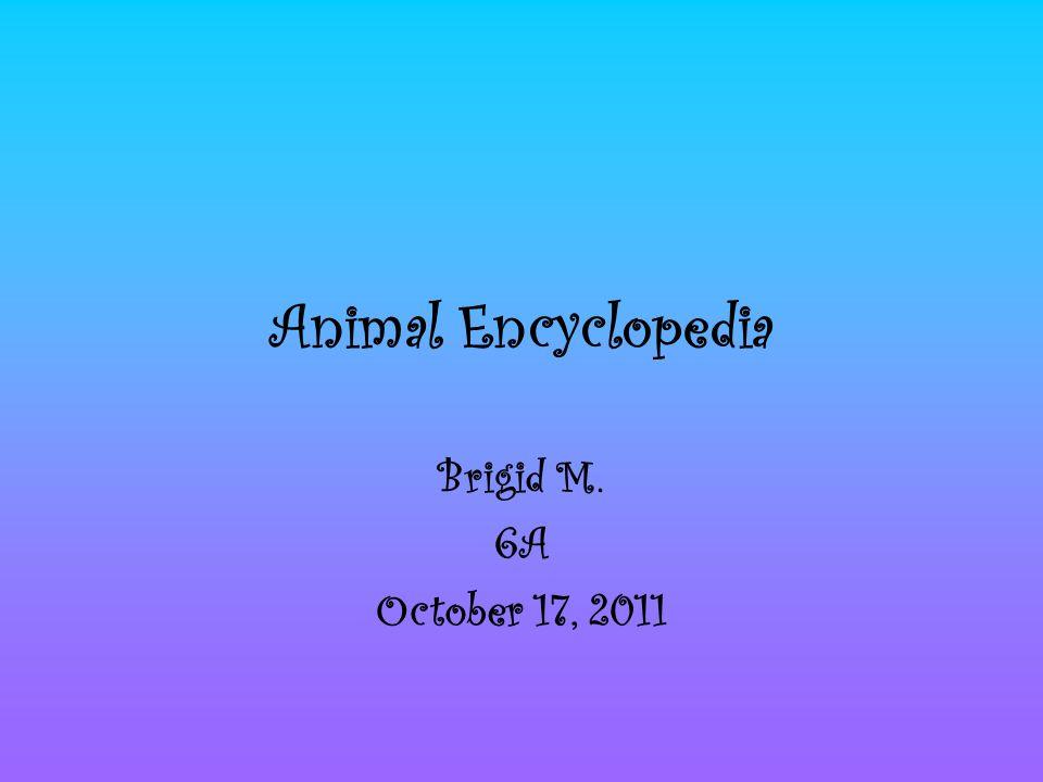 Animal Encyclopedia Brigid M. 6A October 17, 2011