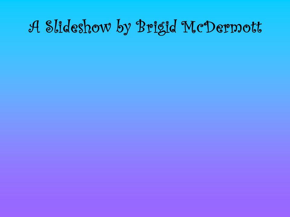 A Slideshow by Brigid McDermott