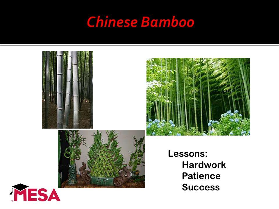 Lessons: Hardwork Patience Success