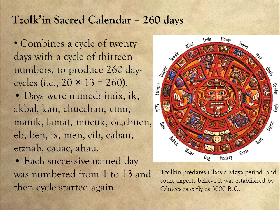 Tzolk'in Sacred Calendar – 260 days Combines a cycle of twenty days with a cycle of thirteen numbers, to produce 260 day- cycles (i.e., 20 × 13 = 260).