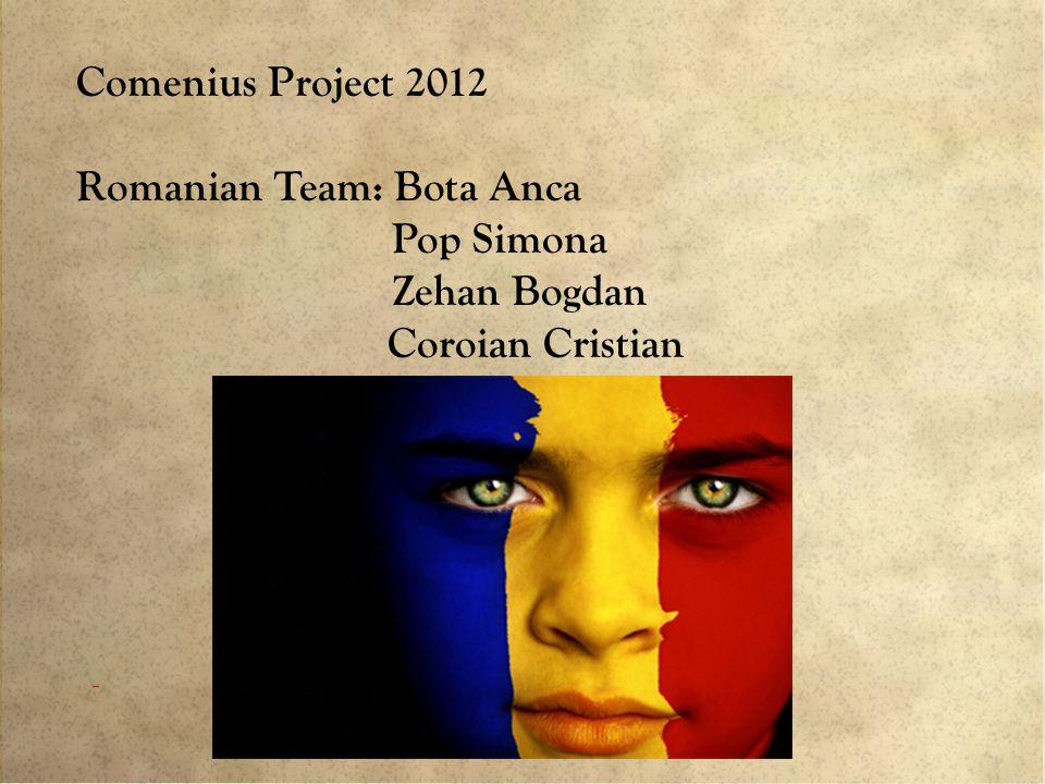 Comenius Project 2012 Romanian Team: Bota Anca Pop Simona Zehan Bogdan Coroian Cristian