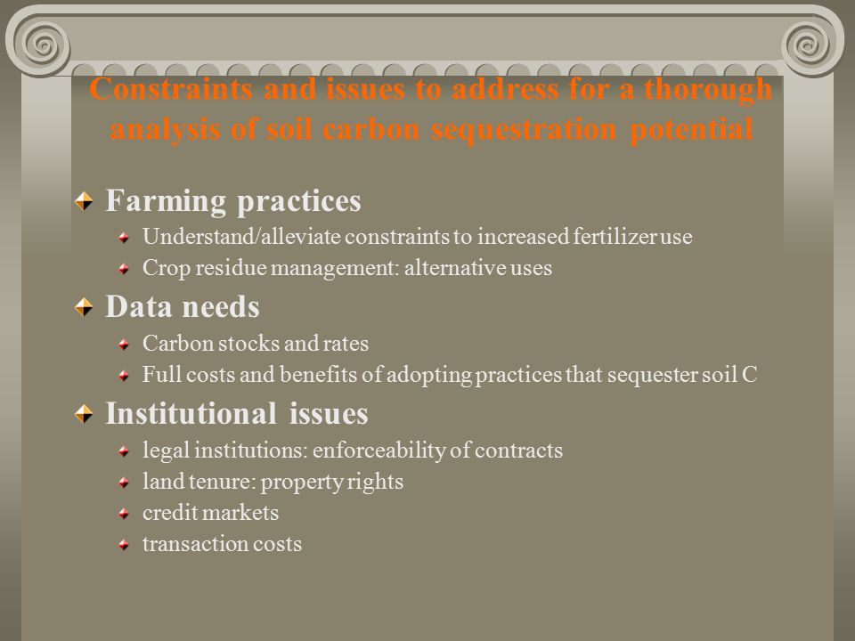 Constraints and issues to address for a thorough analysis of soil carbon sequestration potential Farming practices Understand/alleviate constraints to increased fertilizer use Crop residue management: alternative uses Data needs Carbon stocks and rates Full costs and benefits of adopting practices that sequester soil C Institutional issues legal institutions: enforceability of contracts land tenure: property rights credit markets transaction costs