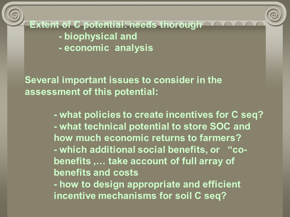 Extent of C potential: needs thorough - biophysical and - economic analysis Several important issues to consider in the assessment of this potential: - what policies to create incentives for C seq.