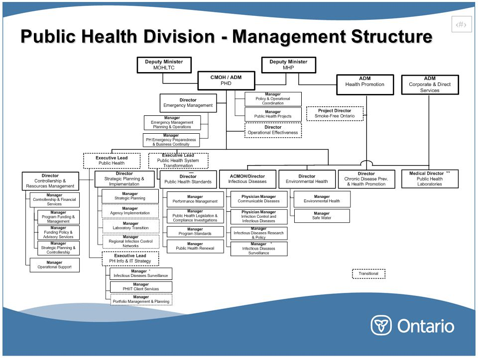 7 Public Health Division - Management Structure