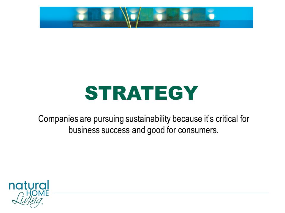 Companies are pursuing sustainability because it's critical for business success and good for consumers.
