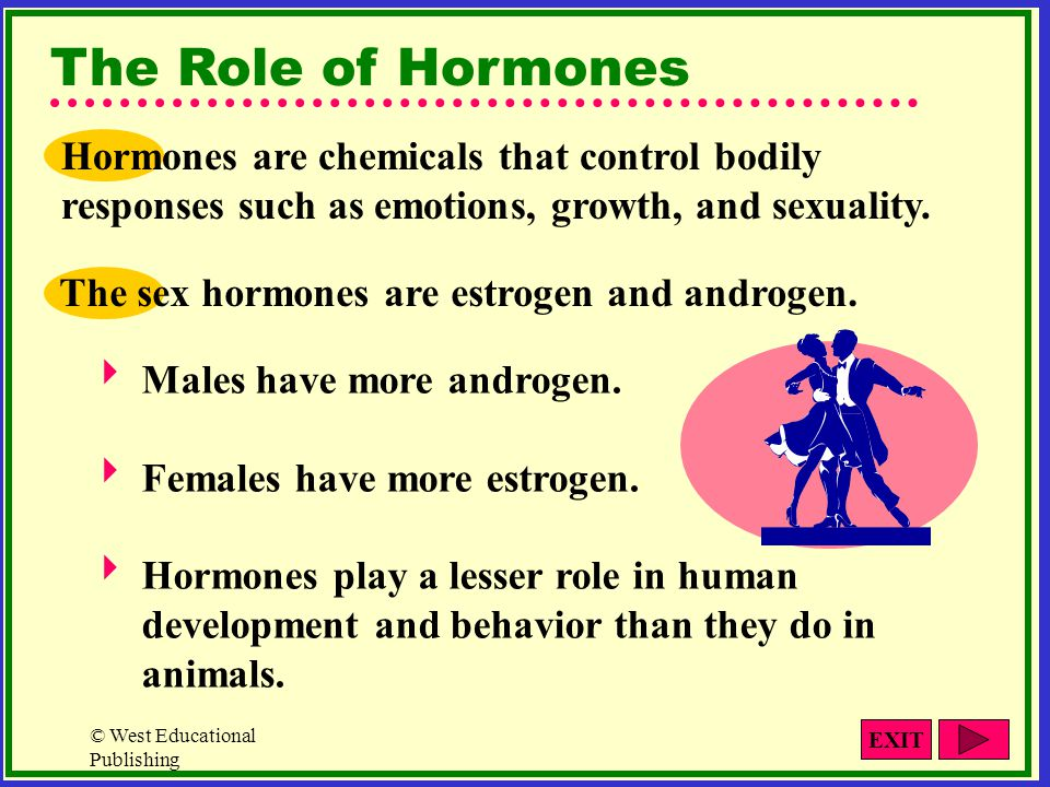 © West Educational Publishing Male/Female Differences The only activity that is clearly defined along gender lines is reproduction.