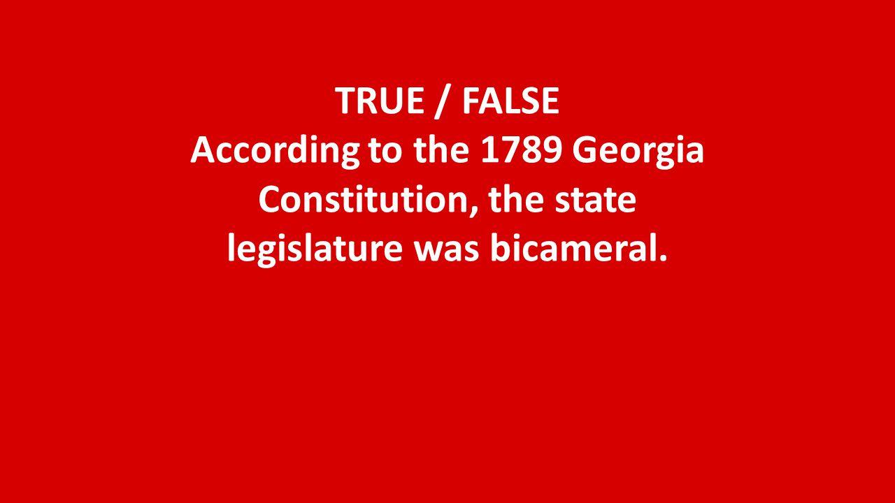 What do we call the legislative branch of Georgia government?
