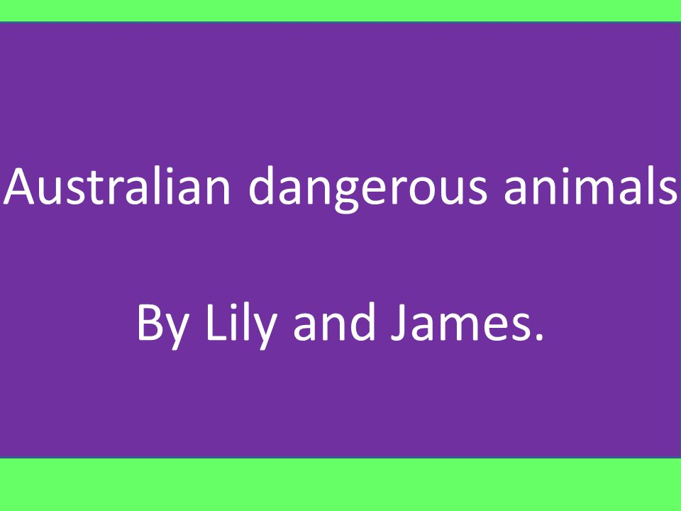 No it is not hard living in Australia with all these dangerous animals and insects, but these are some of the animals and insects that may cause you to go to hospital or make you sick.