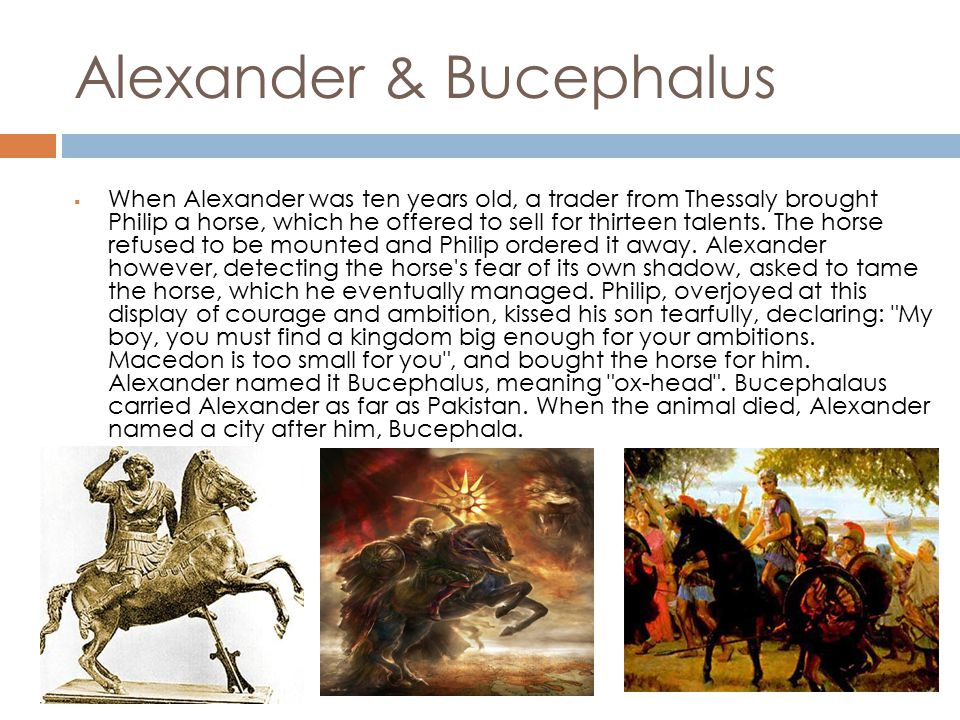 Territories & goals  Alexander conquered the Achaemenid Persian Empire, including Anatolia, Syria, Phoenicia, Judea, Gaza, Egypt, Bactria, and Mesopotamia, and extended the boundaries of his own empire as far as Punjab, India.