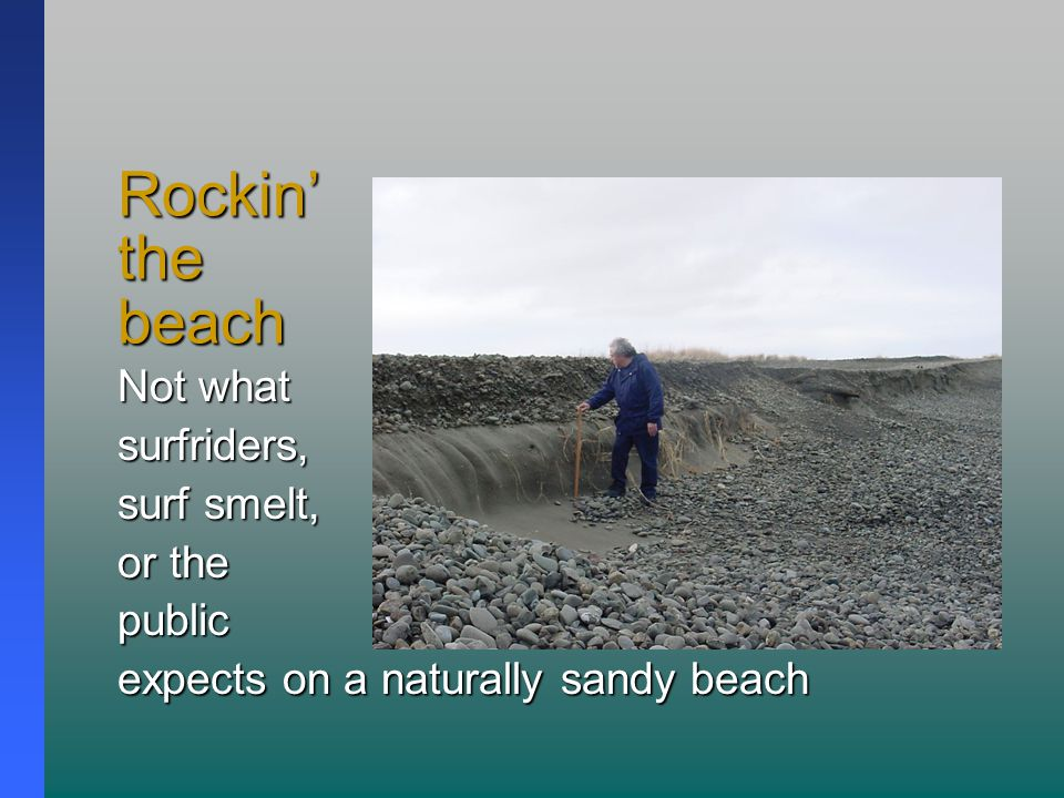 Rockin' the beach Not what surfriders, surf smelt, or the public expects on a naturally sandy beach